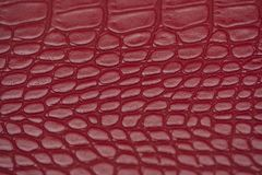 Red, Pink, Pattern, Texture royalty free stock image