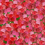 Red and pink roses seamless pattern. Vector floral background of Stock Photography