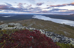 Red and pink sunset over swedish lake with red foreground. Climbing the a top rewarding me with this awesome view of the sunset, Sarek, Sweden stock image