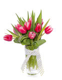 Red pink tulips Stock Photo