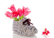 Red pink tulips in a shoe Royalty Free Stock Images