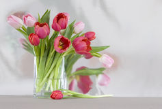 Red and pink tulips in a vase - shiny reflective b Royalty Free Stock Photo
