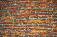 Red / pink wall (background, wallpaper, bricks) Royalty Free Stock Image