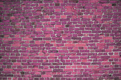 Red / pink wall (background, wallpaper, bricks) Stock Images