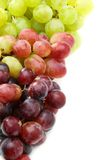 Red, pink and white grapes. Royalty Free Stock Photo