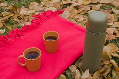 Red plaid and hot tea in the open air. Cups with tea. A thermos with tea or coffee. Picnic in December. Yellow foliage. Romance in the park. Drinking tea in Royalty Free Stock Photo