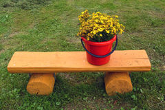 Red plastic bucket with wild medical St Johns wort flowers Royalty Free Stock Photography
