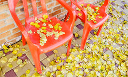Red plastic chairs with autumnal leaves Royalty Free Stock Images