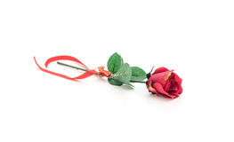 red plastic rose Stock Photography