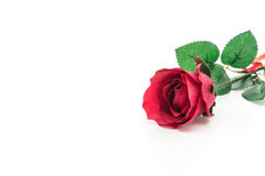 red plastic rose Royalty Free Stock Images
