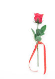 red plastic rose Royalty Free Stock Photos