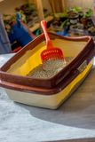 Red plastic scoop with the cat litter in a box. Red plastic scoop with the cat litter in a box stock photo