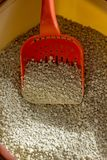Red plastic scoop with the cat litter in a box. stock images