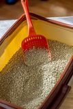 Red plastic scoop with the litter on a cat litter box.  royalty free stock images