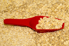 A red plastic scoop with oats Royalty Free Stock Images