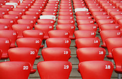 Red plastic seat rows Stock Images