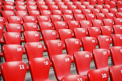 Red plastic seats in   stadium Royalty Free Stock Image