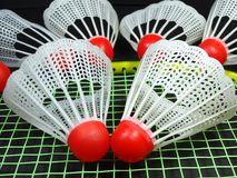 Red plastic shuttlecocks on badminton racket Stock Photo