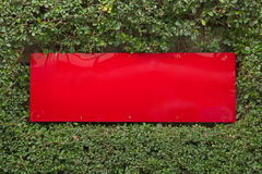 Red plastic sign built into green plant wal Stock Images