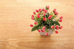 Red plastic timber placed in a vase. Beautiful colorful Perfect for the season of love Royalty Free Stock Photography