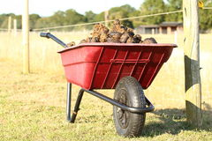 Red Plastic wheelbarrow with horse manure Stock Images