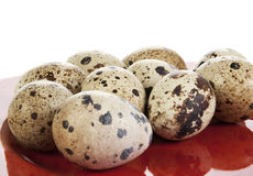 Red plate of quail eggs Royalty Free Stock Photography