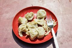 Red Plate of traditional nepali food momos. Steam cooked momos. With salad in Gangtok, India royalty free stock images