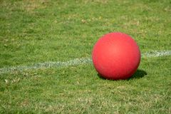 Red Playground ball on the green grass. A red playground ball sits next to the white line on a green grass field royalty free stock images
