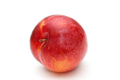 Red plum. Royalty Free Stock Images
