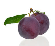 Red plum Stock Photo