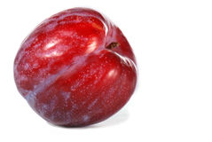 Red plum Royalty Free Stock Image