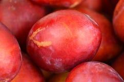 Red plum, close up, DOF Stock Photo