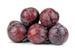 Red plum fruit isolated on white background.  Royalty Free Stock Image