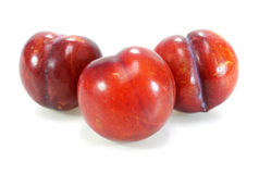 Red plum fruit Stock Photo