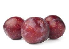 Red plum fruit. On white background Stock Photos