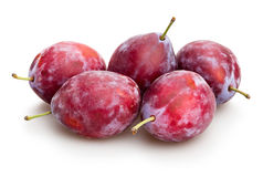 Red plum. Group on white background Royalty Free Stock Photo
