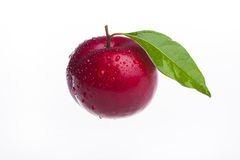 Red plum isolated on white background Royalty Free Stock Photography