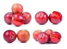 Red plum isolated Royalty Free Stock Image