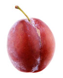 Red plum isolated on white Stock Photos