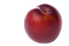 Red Plum Macro Isolated Royalty Free Stock Photo