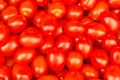 Red plum tomatoes background. Red plum sweet tomatoes, Suitable for food easy salad or abstract ideas design Stock Image