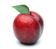 Red Plum Royalty Free Stock Photography