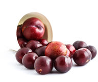 Red plum on white background Stock Images