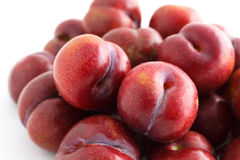 Red plum on white background Royalty Free Stock Images