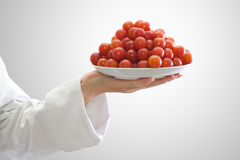 Red plums. Red juicy plums in a woman chef hand Royalty Free Stock Images