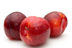 Red plums. Stock Image
