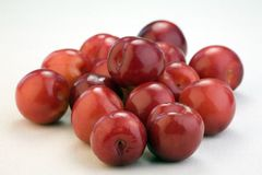 Red plums Royalty Free Stock Image