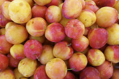 Red plums. Large group of red plums for sale in a market on the island of madeira Royalty Free Stock Photo