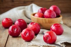 Red plums in a bowl on an old rustic background Royalty Free Stock Image