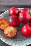 Red plums. Closeup of red plums on grey plate royalty free stock images